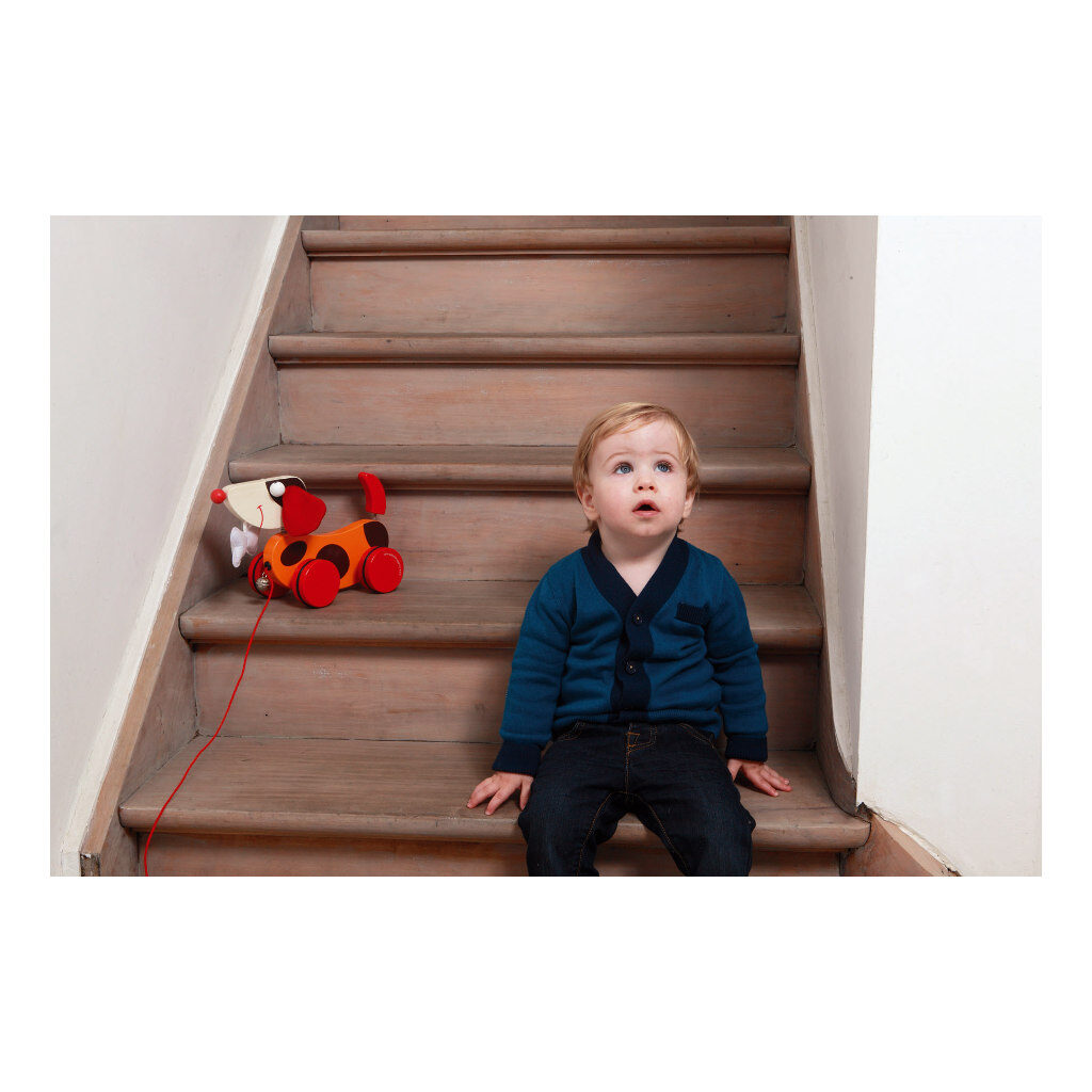 Trekfiguur Grote Hond Rood Oscar Trap Scratch Speelgoed scra-618101