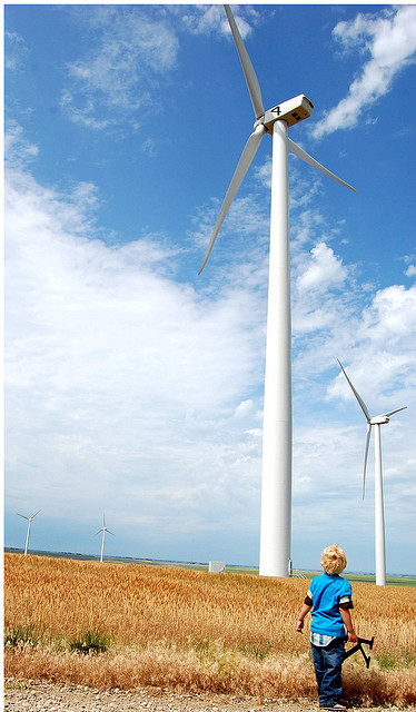qiddie windmill correct