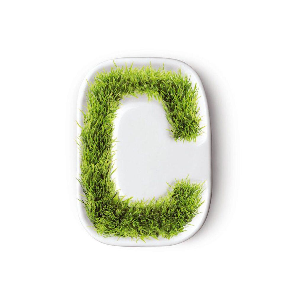 Gras Binnen Porselein Peace