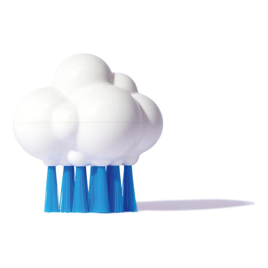 plui-borstel-cloudy-moluk-molu-5043075