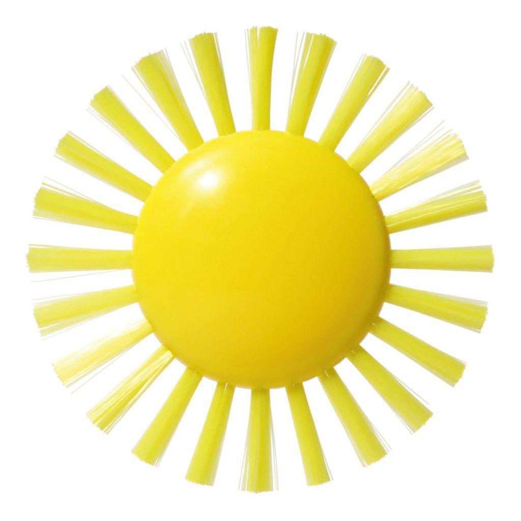 plui-borstel-sunny-moluk-molu-5043070