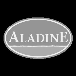 aladine-300x300-zw