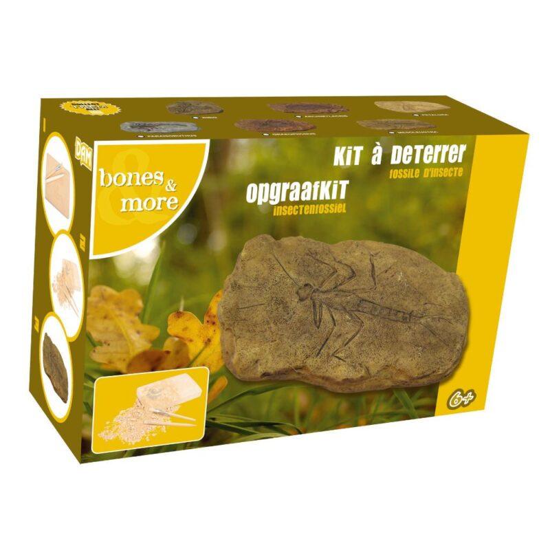Fossiel Steenvlieg Opgraaf Kit 3