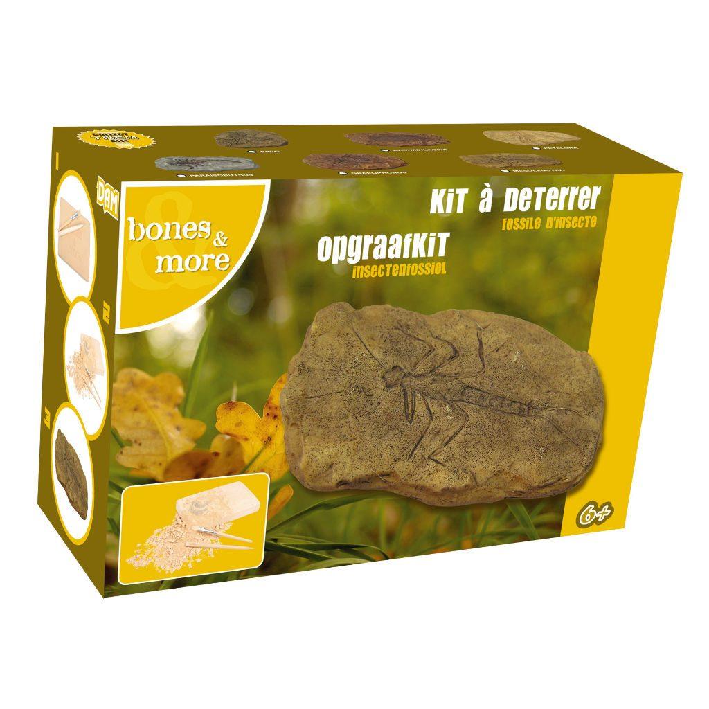 Fossiel Kakkerlak Opgraaf Kit
