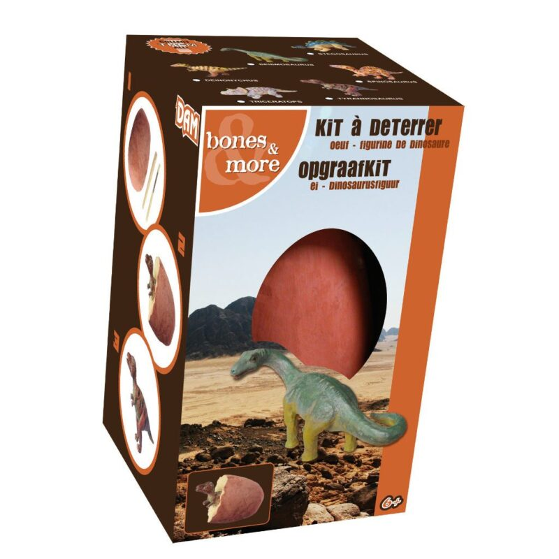 Opgraaf Kit Dinosaurus In Ei