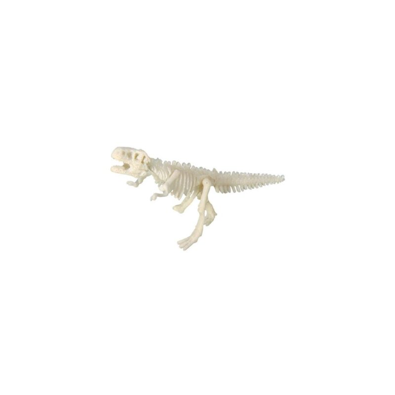 Opgraaf Kit Tyrannosaurus Skelet