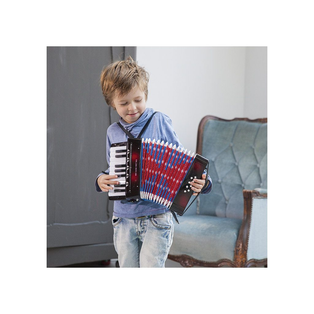 Accordeon Zwart Deluxe New Classic Toys