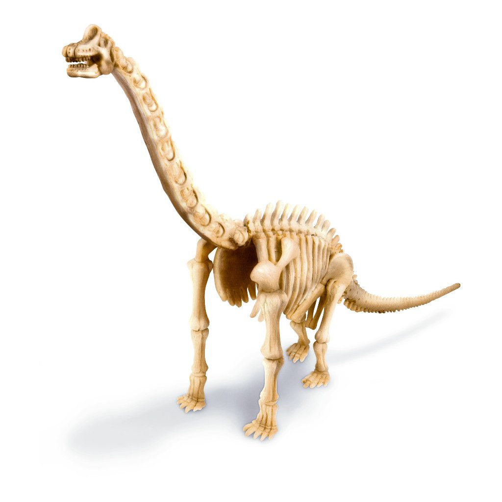 Brachiosaurus Opgraven En Maken 4M