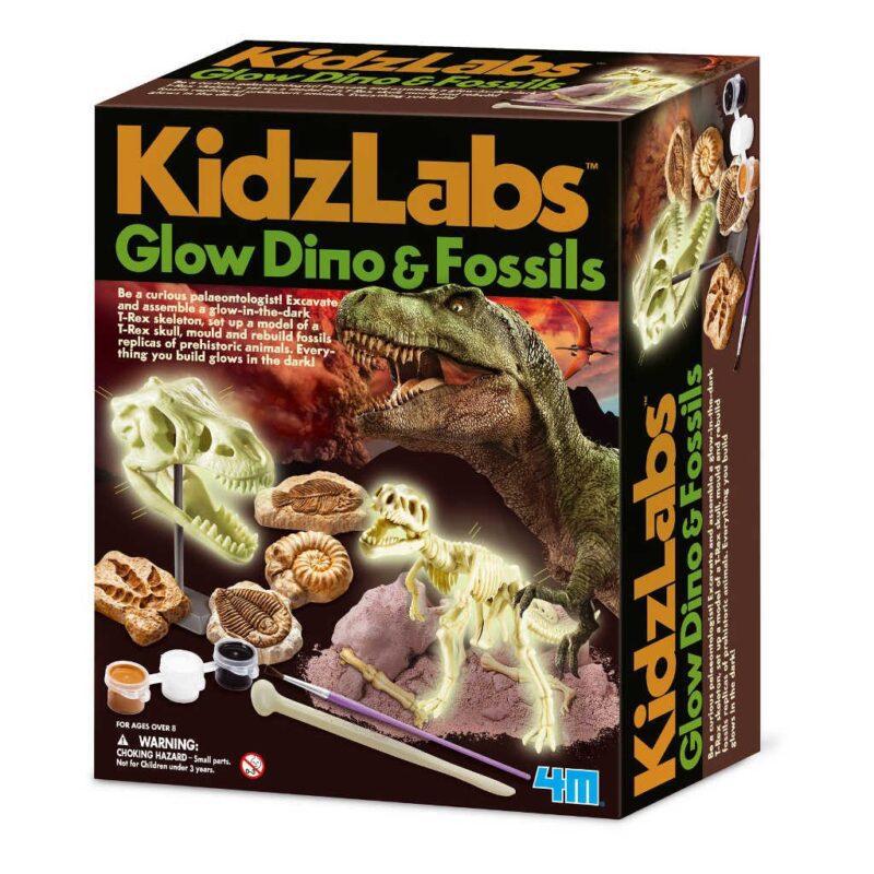 Combo Pack Glow Dinos & Fossielen