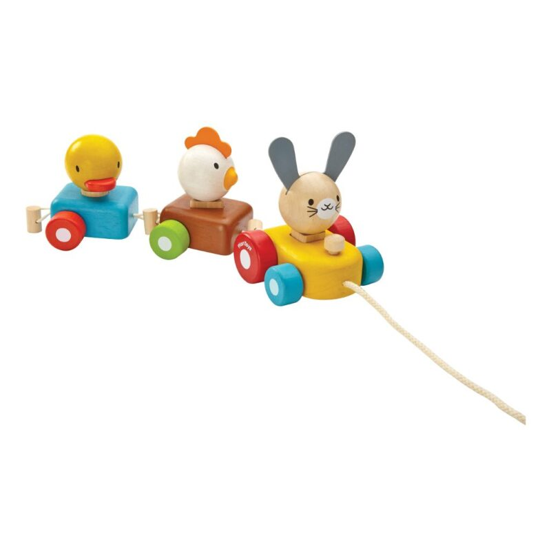 Dier Trein Sorteerder Trekfiguur Plan Toys