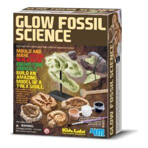 Dino Fossiel Maken 4M