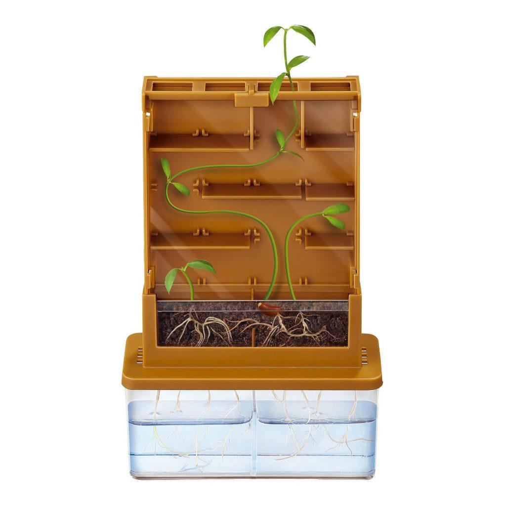 Doolhof Voor Plant Maken