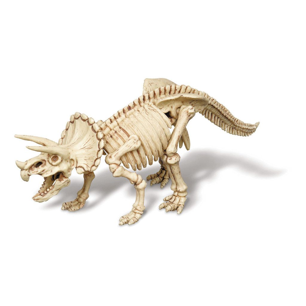 Triceratops Opgraven