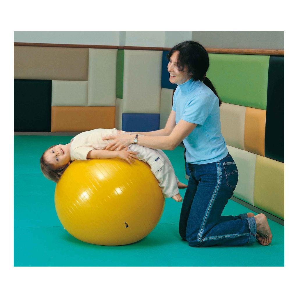Gymnastiekbal 85 Cm Weplay Fysio Bal Wepl-Kb1303