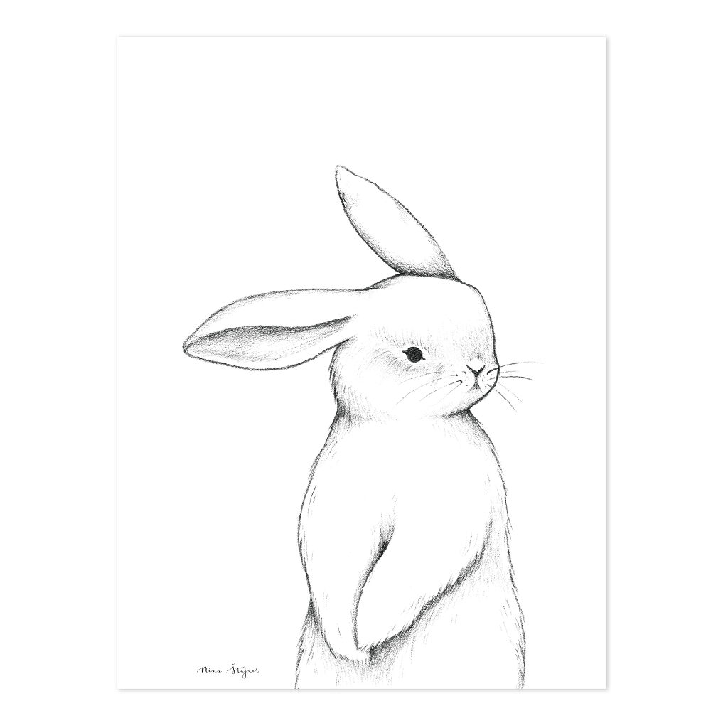 Bunny Front View Poster | Lilipinso