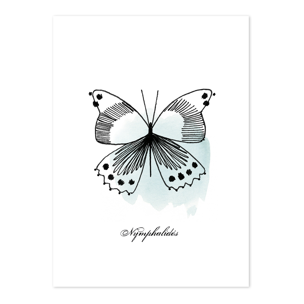 Butterflies Ansichtkaart Set Meadow Treasure Lilipinso Vlinder Turquoise Lili-P0218