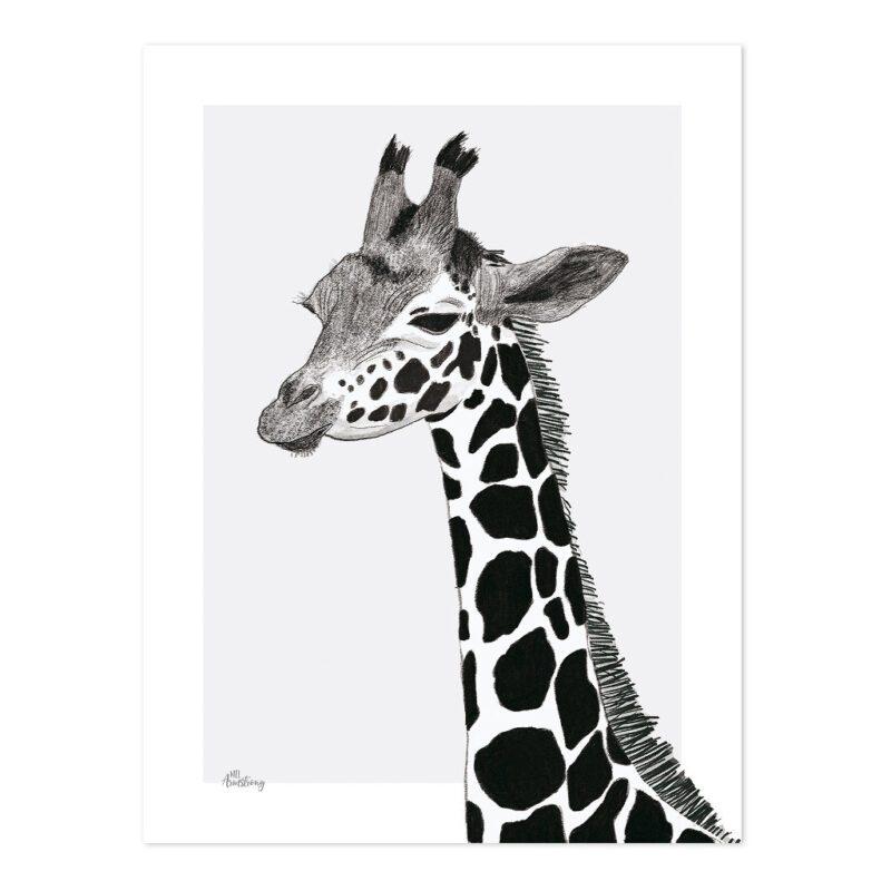 Giraffe Poster   Serengeti   Lilipinso