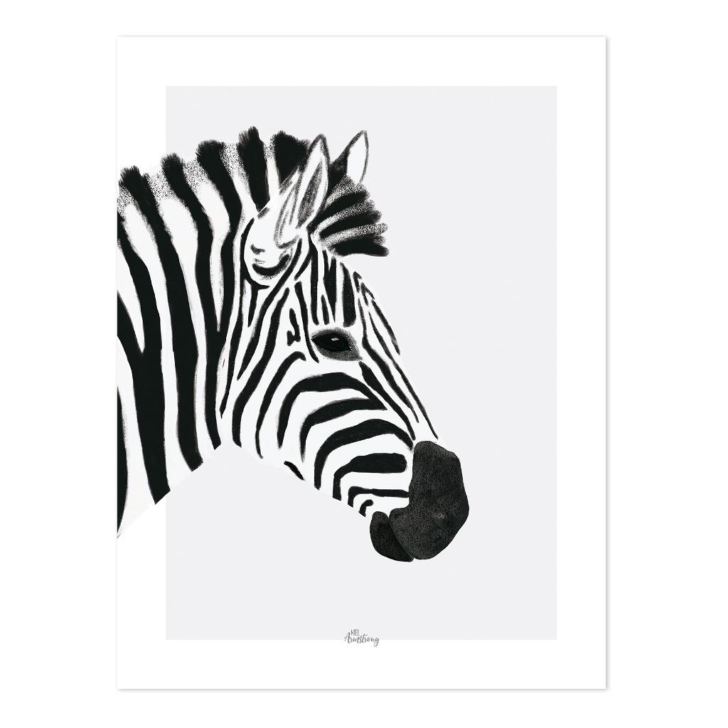Zebra Poster   Serengeti   Lilipinso