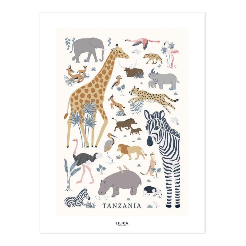 Safari Dieren Poster Tanzania Lilipinso Zonder Lijst Wild Animals African Savanne Kinderkamer Babykamer Muurdecoratie Lief Vriendelijk Kleurrijk Realistisch QIDDIE.com lili-P0298-zl