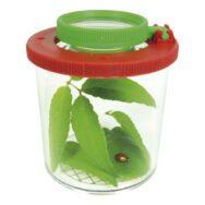 Kijkpot Met Vergrootglas Groot Insecten Potje Loop QIDDIE.com edup-150006