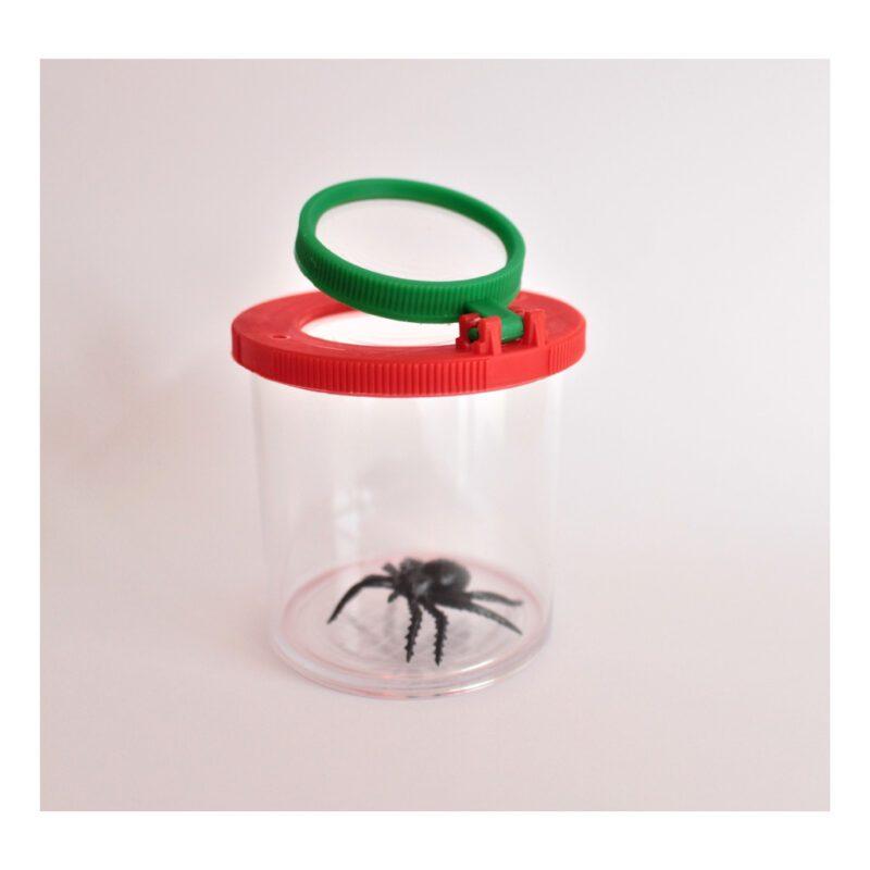 Kijkpot Met Vergrootglas Groot Lieveheerstbeestje Spin Mier Tak Blad Bloem Insecten Potje Natuur Pot QIDDIE.com edup-150006