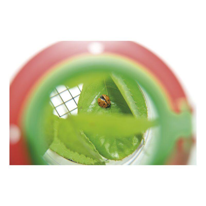Kijkpot Met Vergrootglas Groot Natuur Ontdekken Kijken Verzamelen Kind Kleuter Peuter School Kinderopvang QIDDIE.com edup-150006