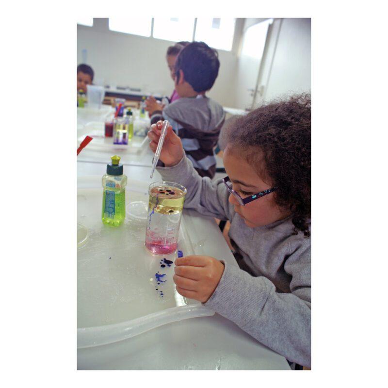 Natuurwetenschap Onderzoek Set Expirimenten Set Voor Kids Kinderen School Klas QIDDIE.com edup-120416