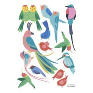 Tropische Vogels Muursticker A3 Rio Lilipinso Baby Peuter Kleuter Kinder Speel Kamer Kleurrijk Jungle QIDDIE.com lili-S1426