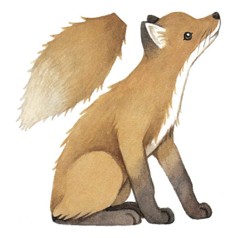 Vintage Fox Muursticker L Forest Lilipinso Wild Dier Bos Dieren Kind Peuter Kleuter Muur Hal Speel Kamer QIDDIE.com lili-S1448